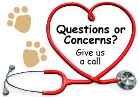 Questions or Concerns? - Give us a call